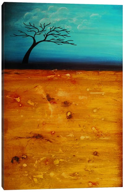 Soul Searching Canvas Art Print