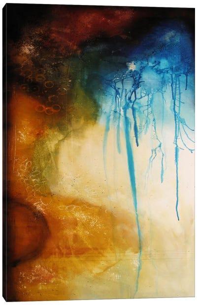 Speed Of Light Canvas Art Print
