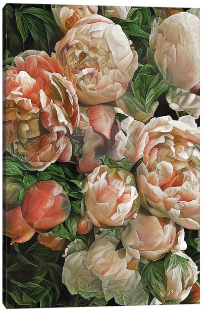 Botanical Scents Canvas Art Print