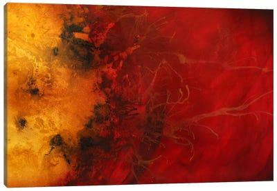 Dimensional Considerations Canvas Art Print