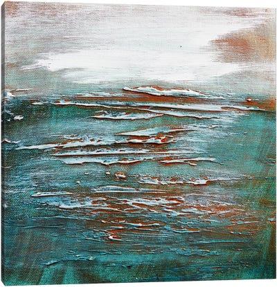 Across The Heavens Canvas Art Print