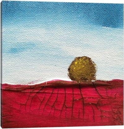 Dream Big Canvas Print #HOD80
