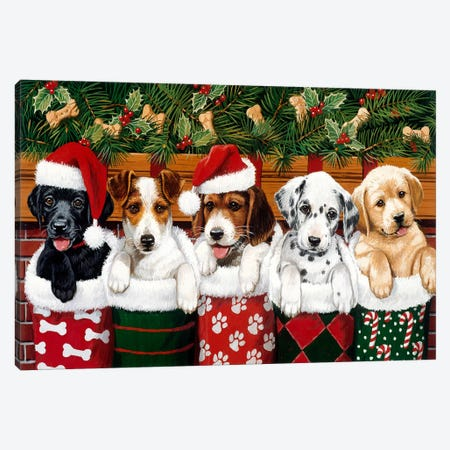 Christmas Puppies Canvas Print #HOL51} by William Vanderdasson Canvas Art Print