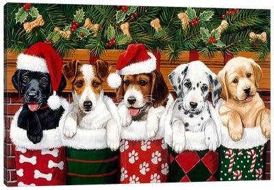 Christmas Puppies Canvas Print #HOL51