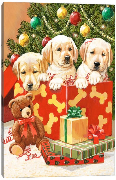 Holiday Puppies by William Vanderdasson Canvas Art
