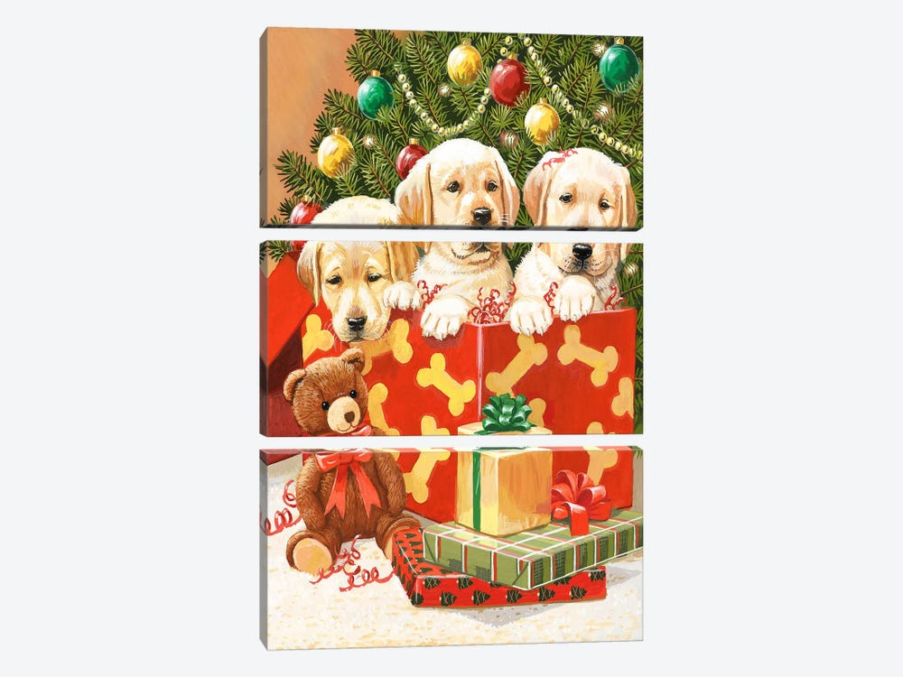 Holiday Puppies by William Vanderdasson 3-piece Canvas Wall Art
