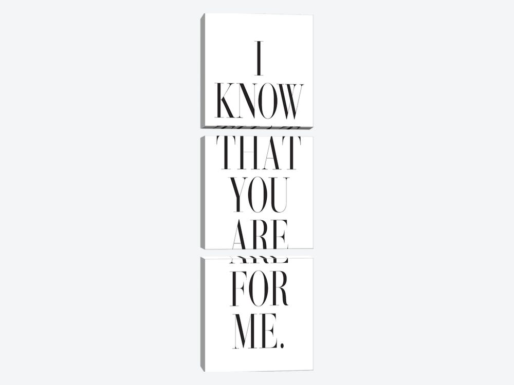 I Know That You Are For Me. by Honeymoon Hotel 3-piece Canvas Art