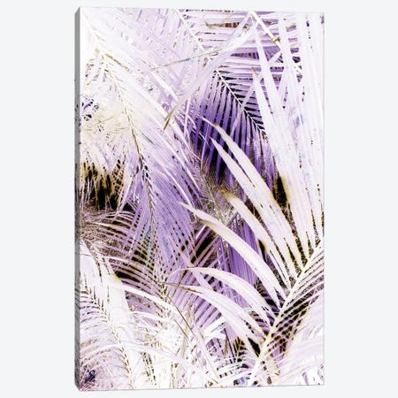 Jungle (Bleached) Canvas Print #HON143} by Honeymoon Hotel Art Print