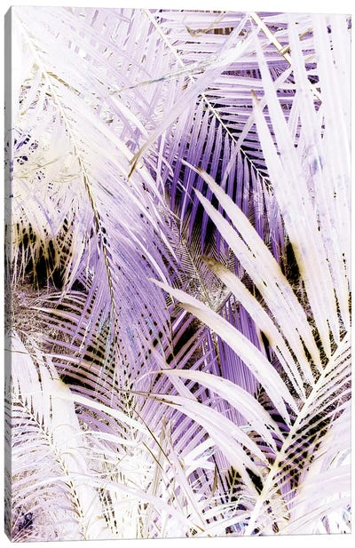 Jungle (Bleached) Canvas Art Print