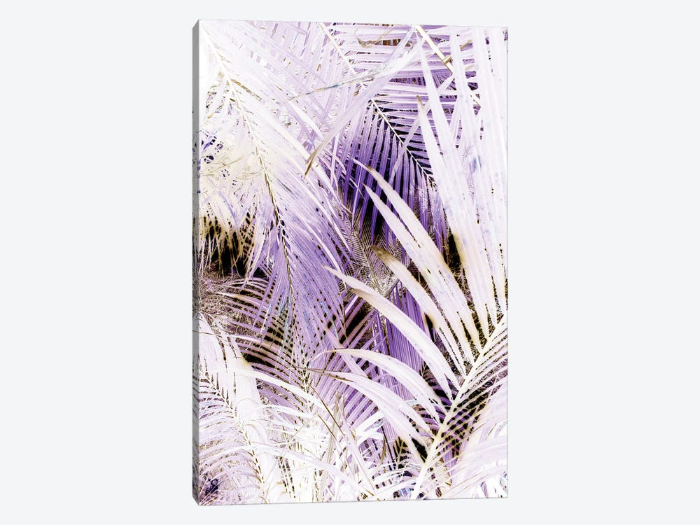 Jungle (Bleached) by Honeymoon Hotel 1-piece Canvas Art