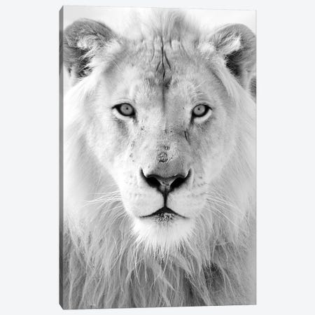 King Canvas Print #HON145} by Honeymoon Hotel Canvas Artwork