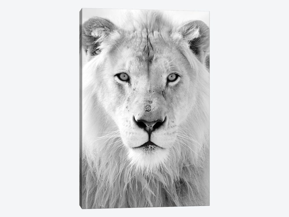 King by Honeymoon Hotel 1-piece Canvas Art