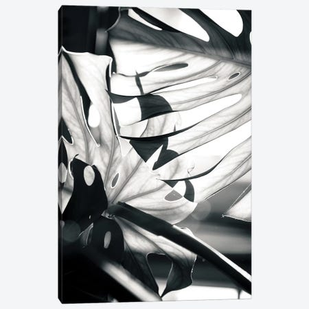 Mono Leaves Canvas Print #HON177} by Honeymoon Hotel Art Print