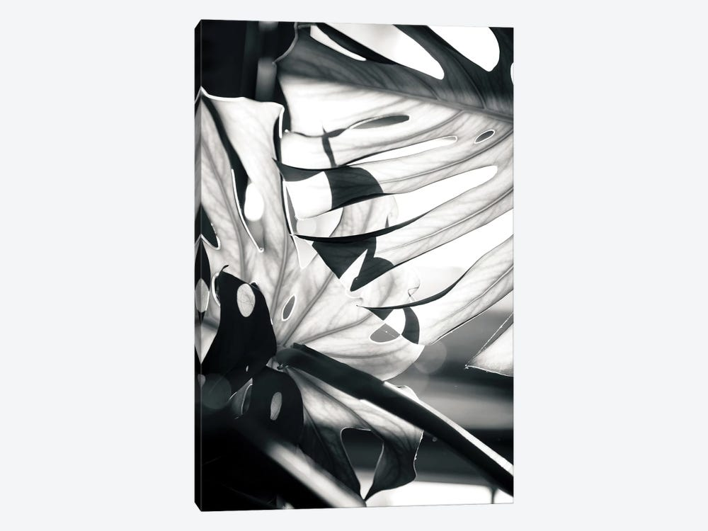 Mono Leaves by Honeymoon Hotel 1-piece Canvas Art Print