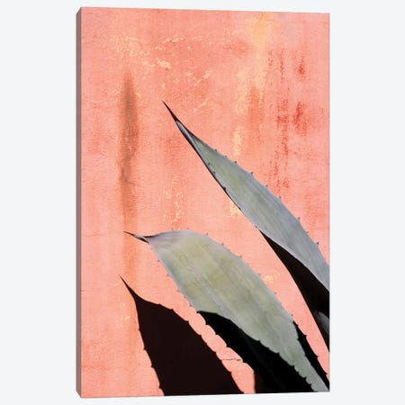 Peach Cactus Canvas Print #HON199} by Honeymoon Hotel Canvas Wall Art
