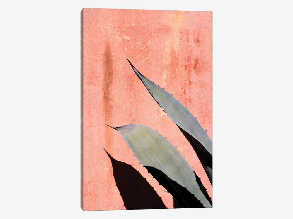 Peach Cactus by Honeymoon Hotel 1-piece Canvas Art Print