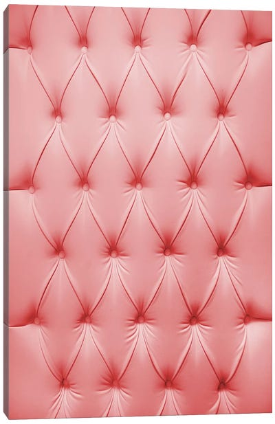 Pink Padded Cell Canvas Art Print