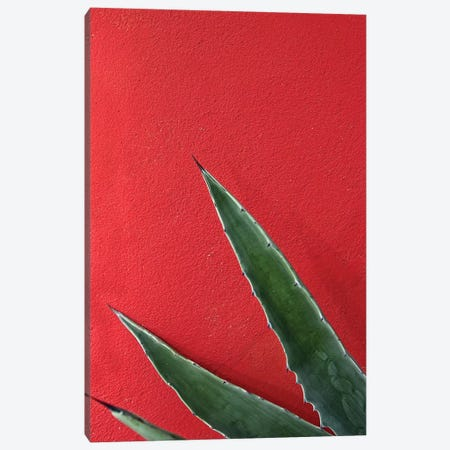 Ruby Agave 3-Piece Canvas #HON221} by Honeymoon Hotel Canvas Art