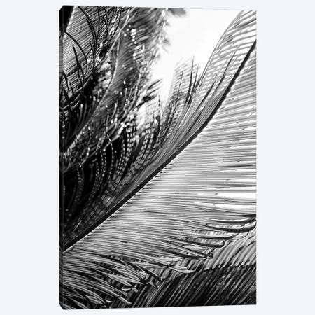 Tropical Canvas Print #HON250} by Honeymoon Hotel Canvas Art Print