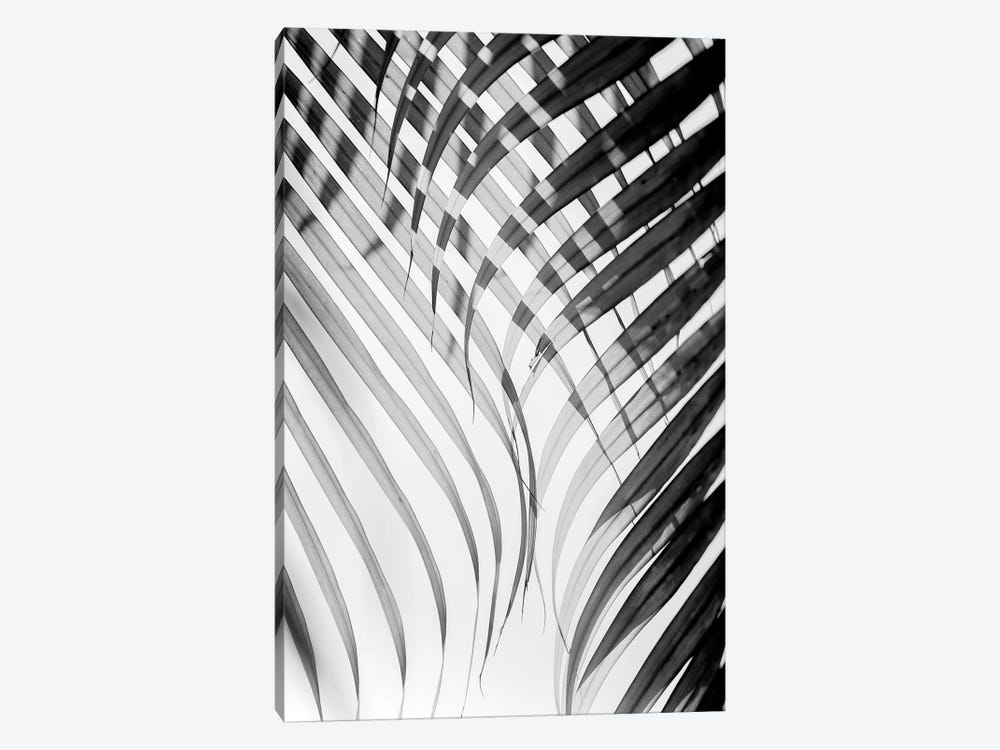 Tropical Curtain by Honeymoon Hotel 1-piece Canvas Print