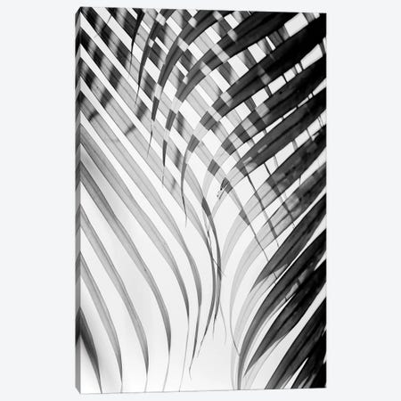 Tropical Curtain Canvas Print #HON251} by Honeymoon Hotel Art Print