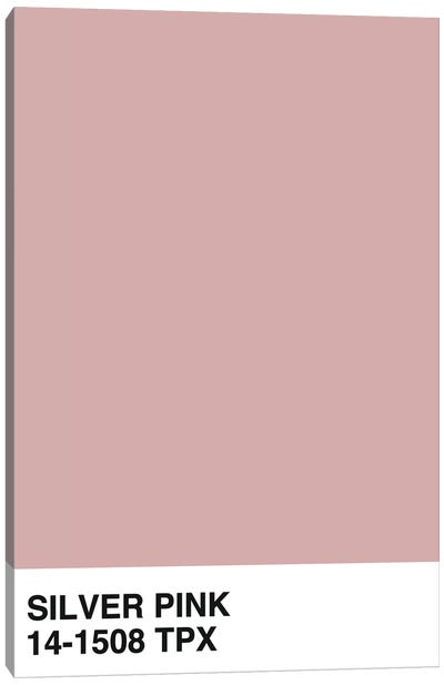 Silver Pink 14-1508 TPX Canvas Art Print