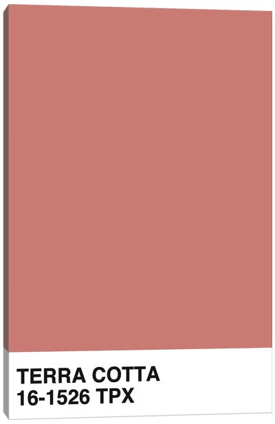 Terra Cotta 16-1526 TPX Canvas Art Print