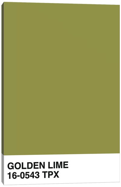 Golden Lime 16-0543 TPX Canvas Art Print