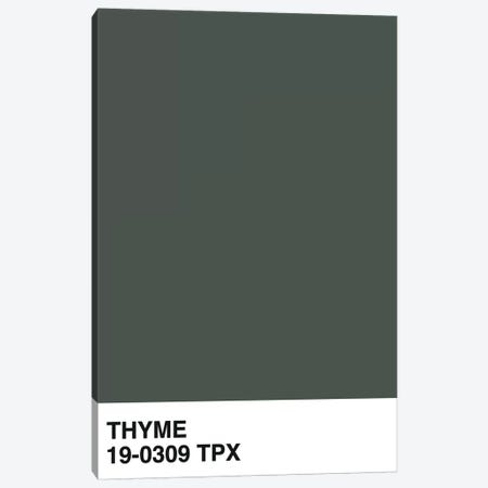 Thyme 19-0309 TPX Canvas Print #HON289} by Honeymoon Hotel Canvas Art