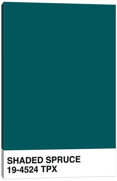 Shaded Spruce 19-4524 TPX Canvas Art Print
