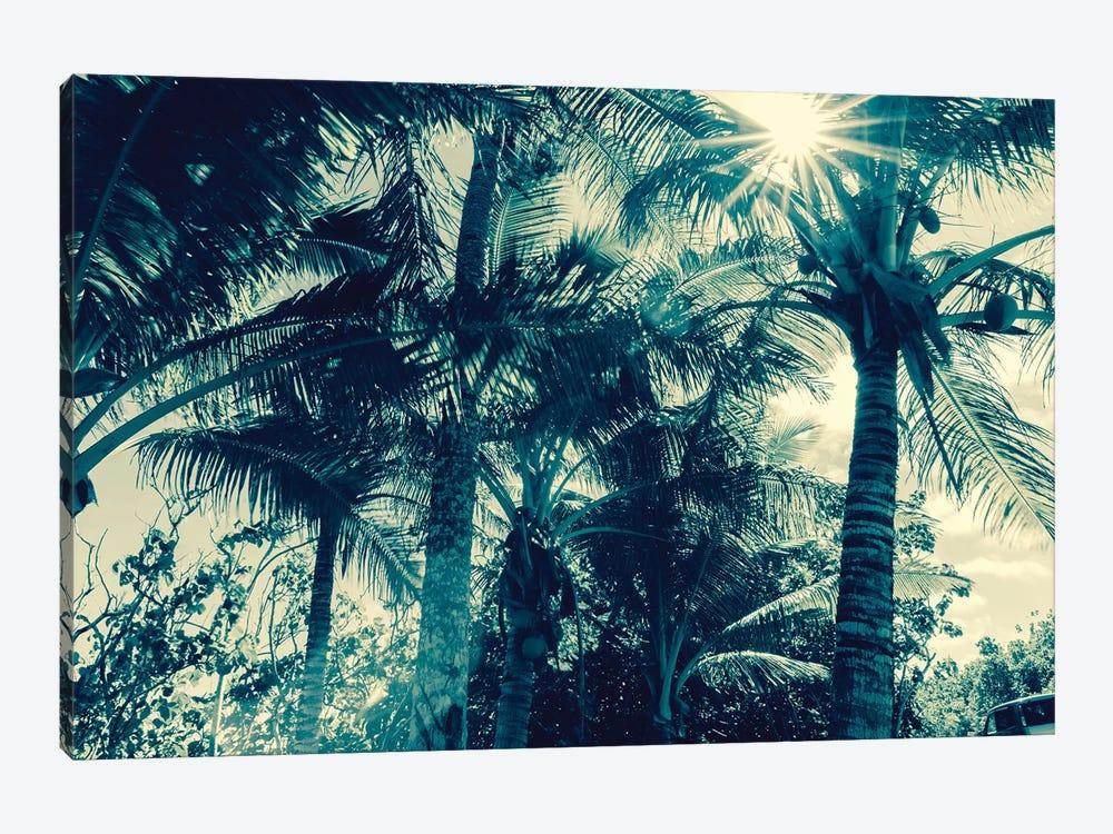 Coconut Palms by Honeymoon Hotel 1-piece Canvas Wall Art