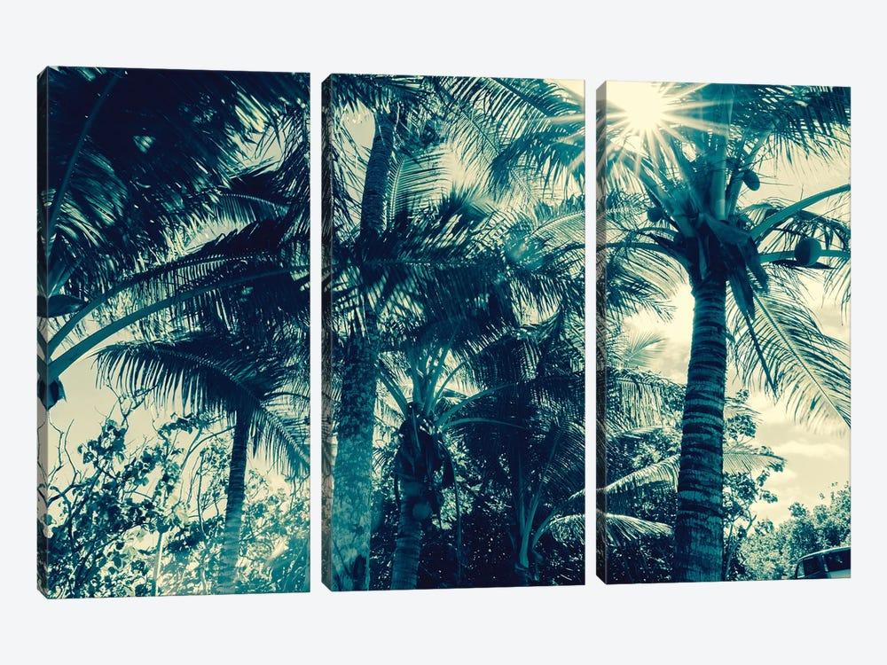 Coconut Palms by Honeymoon Hotel 3-piece Canvas Wall Art