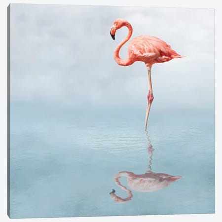Feathered Pond Canvas Print #HON295} by Honeymoon Hotel Canvas Art