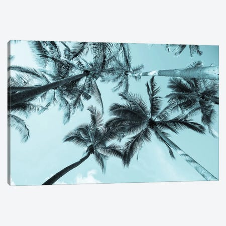 Pastel Palm Canvas Print #HON310} by Honeymoon Hotel Canvas Wall Art