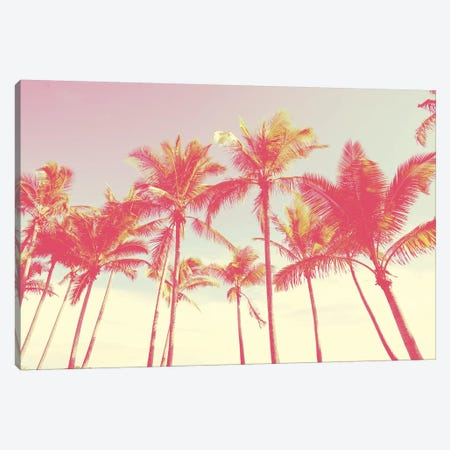 Tropical Skies Canvas Print #HON317} by Honeymoon Hotel Art Print
