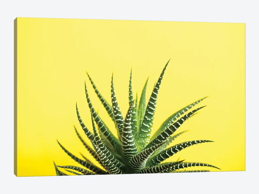Yellow by Honeymoon Hotel 1-piece Art Print
