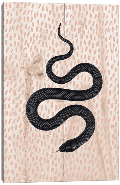 Slither Canvas Art Print
