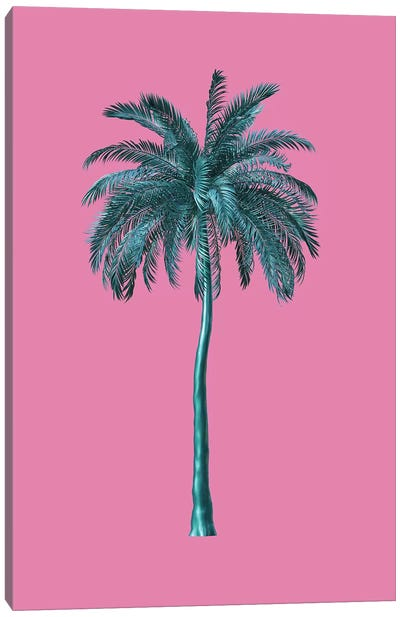Tall Trees In Pink Canvas Art Print