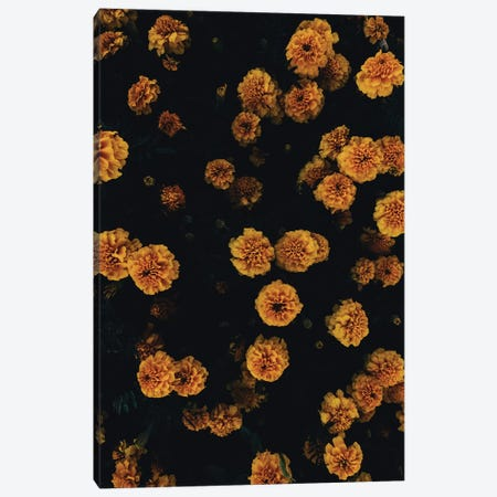 Golden Florals Canvas Print #HON392} by Honeymoon Hotel Canvas Wall Art