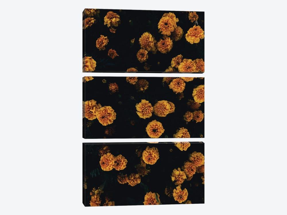 Golden Florals by Honeymoon Hotel 3-piece Canvas Print