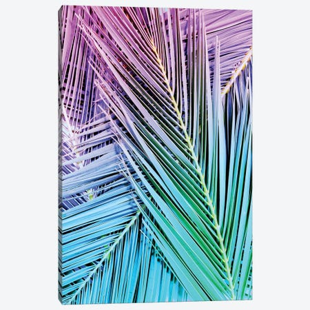Rainbow Posey Canvas Print #HON425} by Honeymoon Hotel Art Print