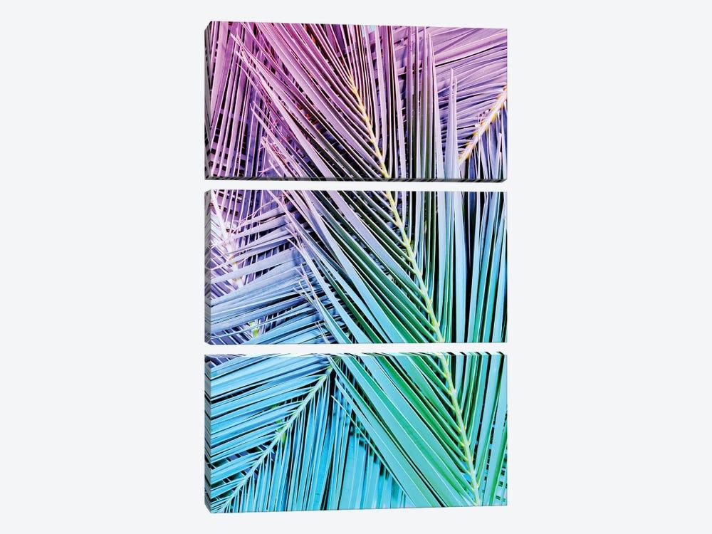 Rainbow Posey by Honeymoon Hotel 3-piece Canvas Art