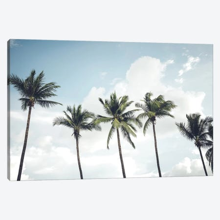 Blowing Palms 3-Piece Canvas #HON440} by Honeymoon Hotel Canvas Wall Art