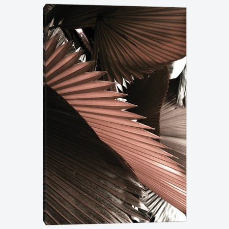Exposure Canvas Print #HON441} by Honeymoon Hotel Canvas Art