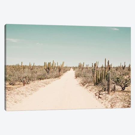 The Dust Canvas Print #HON460} by Honeymoon Hotel Canvas Artwork
