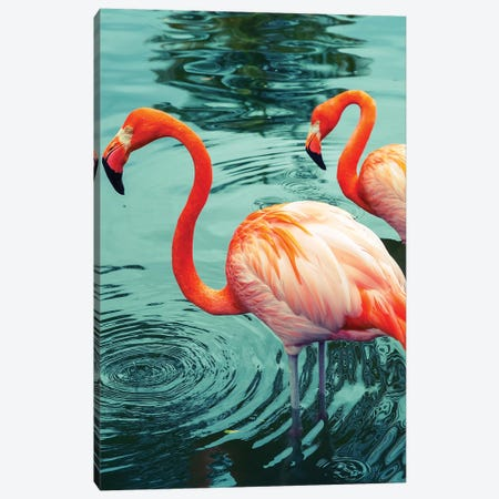 Flamingo Canvas Print #HON89} by Honeymoon Hotel Canvas Art