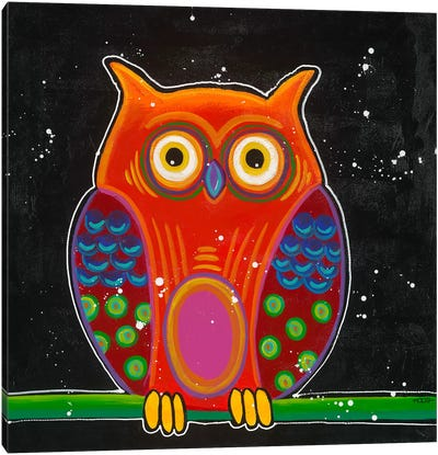 Funny Owl II Canvas Art Print