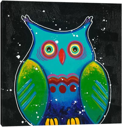 Funny Owl III Canvas Art Print