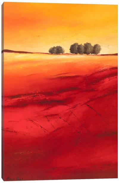 Tree Timberline II Canvas Art Print