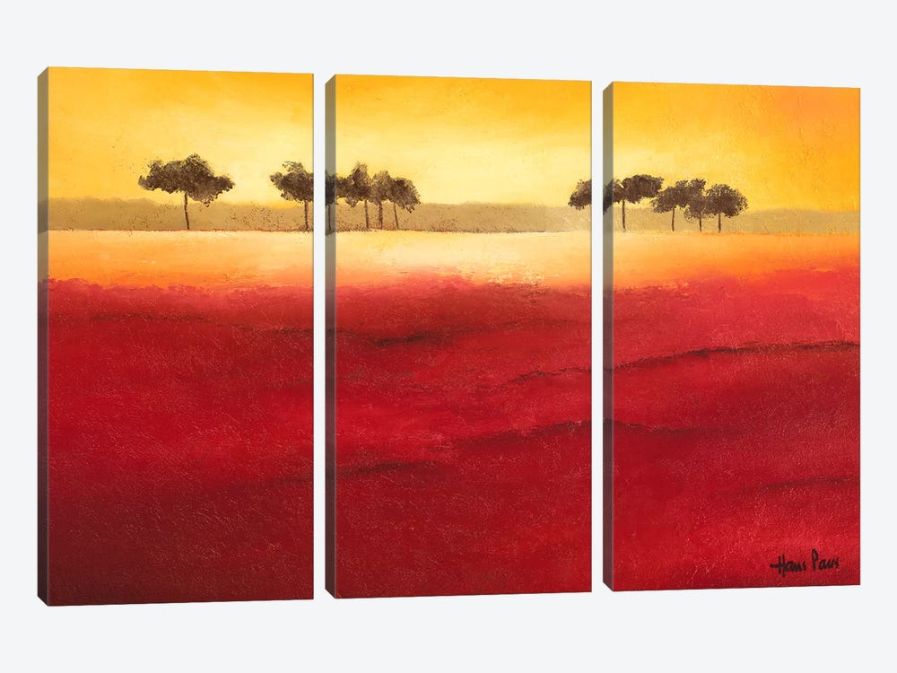 Tree Timberline III by Hans Paus 3-piece Canvas Print